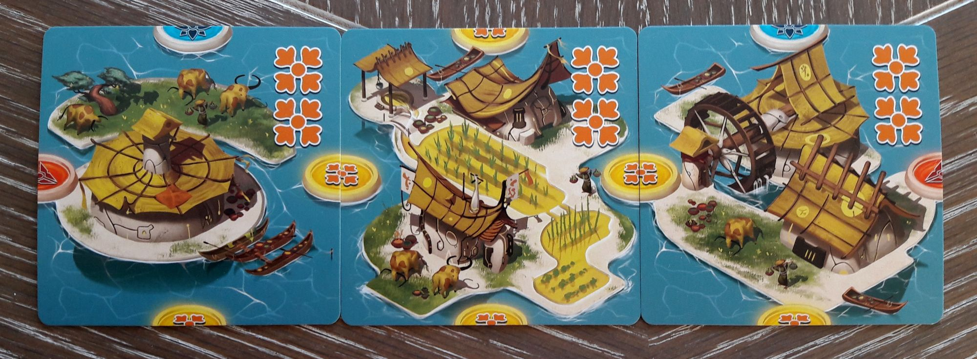 Les cartes îles.  2/5 : les bâtiments agricoles. Buffles et rizières.