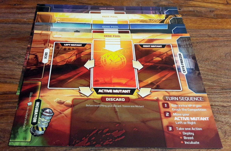 Chacun son plateau avec le marché en haut et les 3 cartes en jeu au milieu.