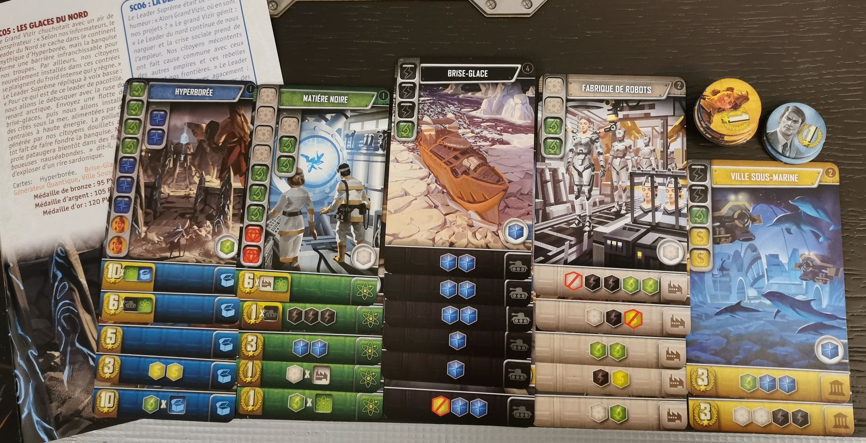 Scenario 5 : 135 points. niveau or + 15 points  avec 3 cartes double scoring sur le vert. C'est comme cela qu'il faut jouer !