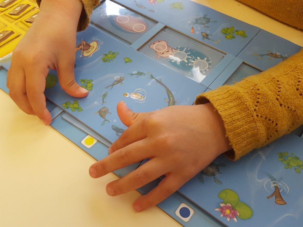 Mélanger les cartes hippopotames et insérer 4 cartes dans chacune des cinq rangées du plateau jusqu'à ce qu'elles soient complètes.