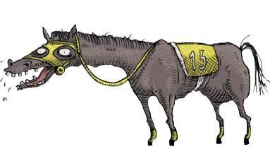 Horse fever