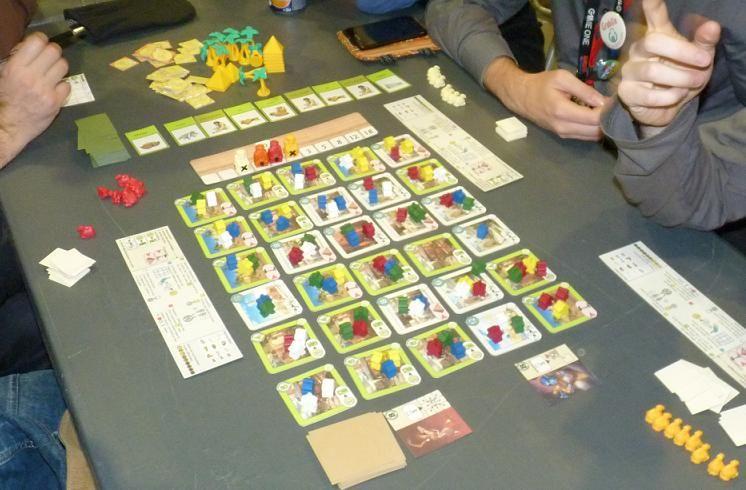 Beaucoup de meeple ... des blancs, des rouges, des jaunes, des verts et des bleus !