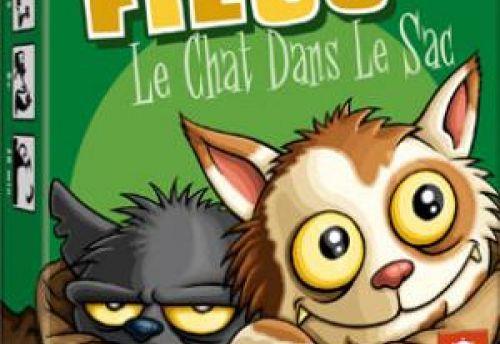 Filou : le chat dans le sac
