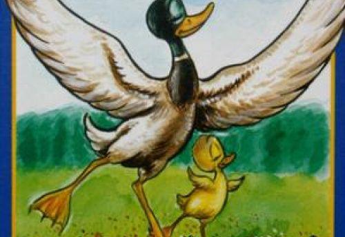 Pas de Duck