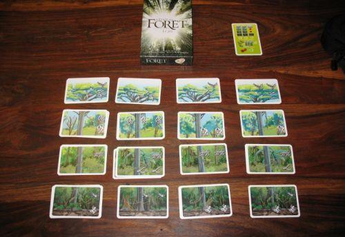 Babou et sa forêt parfaite ...