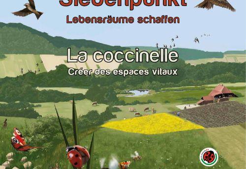 Siebenpunkt / La coccinelle