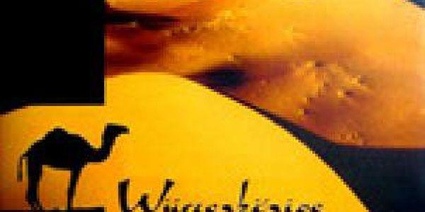 Critique de Wüstenkönige