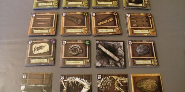 Archaeologia : des dinosaures et des hommes