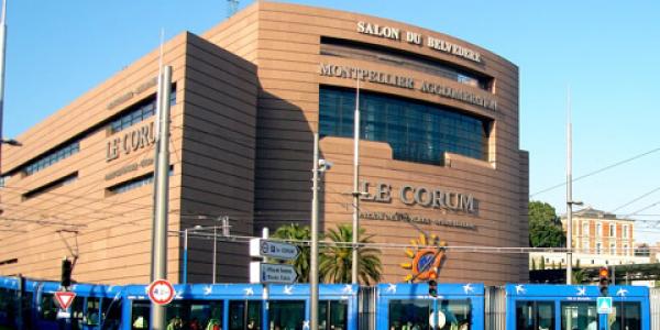 Festival du Jeu de Montpellier 13 et 14 mai 2017