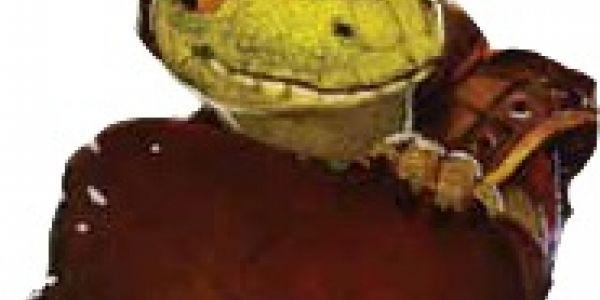 """Le développement du """"gecko"""""""