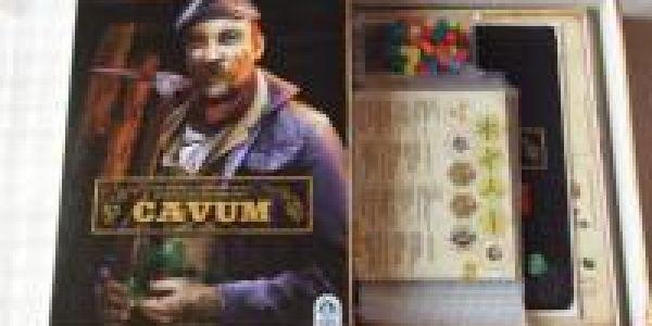 """Cavum, notre nouveau """"c'est dans la boîte"""""""