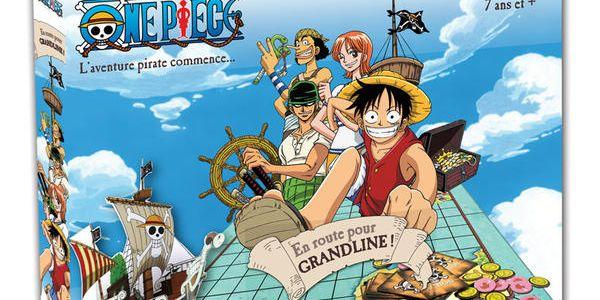 One piece : en route pour l'aventure pirate !