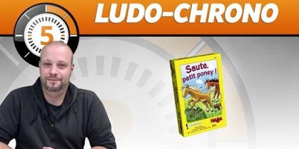 Le Ludochrono de Saute, petit poney